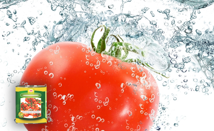 Tomato-rich diet lowers prostate cancer risks
